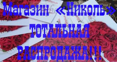 Автозапчасти в Чалтыре - image Nikol-800x44512-390x205 on http://infoproffi.ru